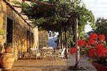Podere Felceto vacation accommodation in Chianti