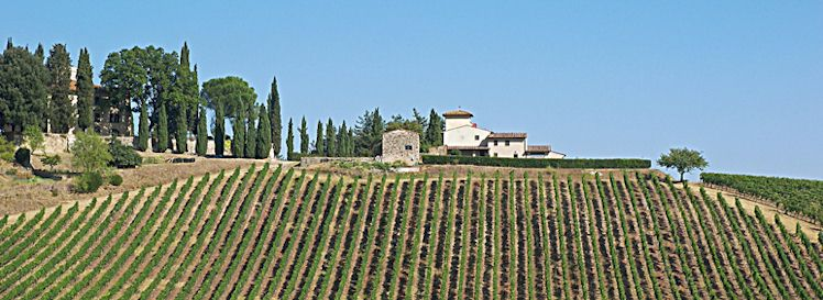 Tuscan Wineries