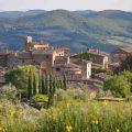 Volpaia Chianti Tuscany