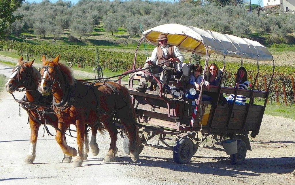 Excursions in Tuscany by horse and wagon