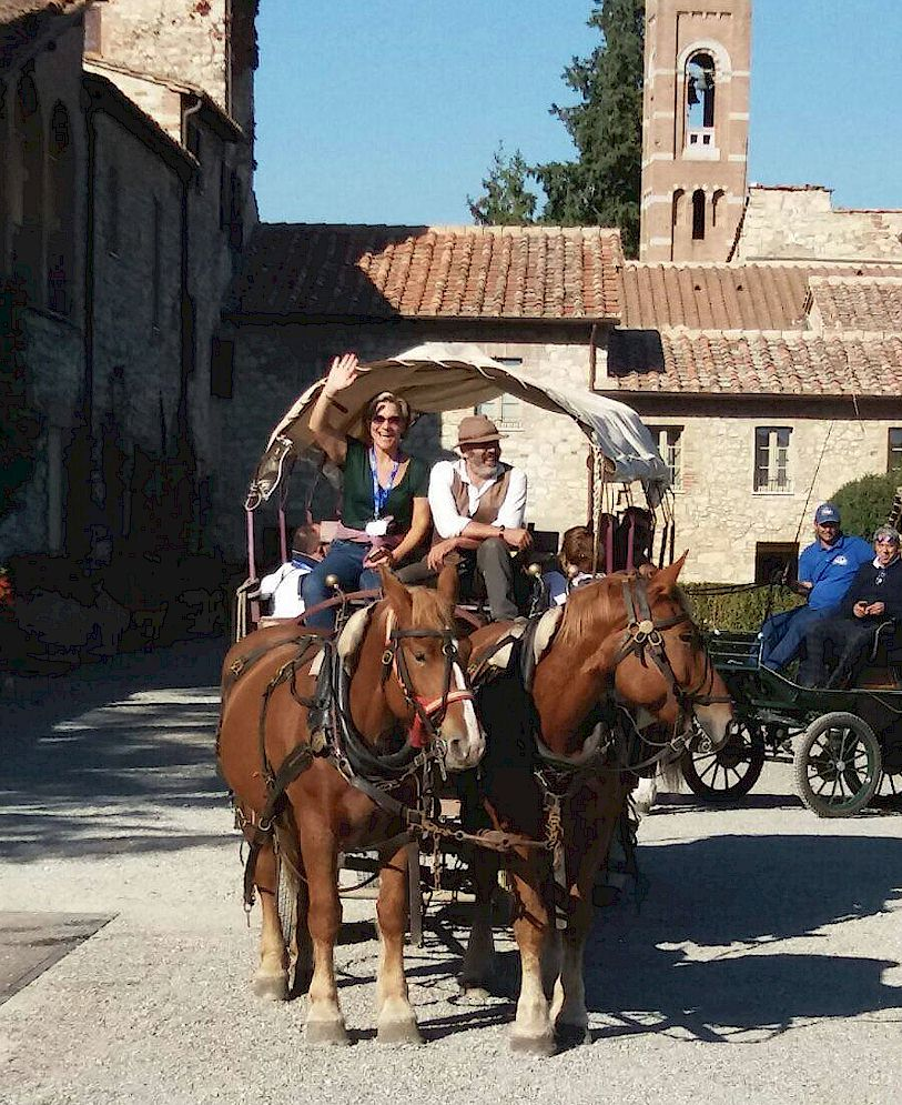 Tuscany horse and wagon excursions